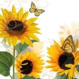 2 Schmetterlinge & Sonnenblumen - 2 butterflies & sunflowers - 2 papillons et tournesols
