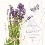 Lavendelstrauss, Schmetterling & Geschriebenes - Lavender Bouquet, Butterfly & Written - Bouquet de lavande, papillon et écrit