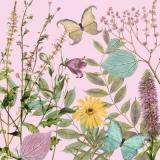 2 Schmetterlinge besuchen Wiesenkräuter - 2 butterflies visit meadow herbs - 2 papillons visitent les herbes des prés