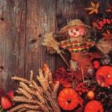 Strohpuppe, Korn, Kürbis & herbstliche Dekoration vor Holzwand - Straw doll, grain, pumpkin & autumn decoration in front of wooden wall - Paille de poupée, grain, citrouille et décoration d automne de