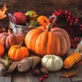 verschiedene Kürbisvariationen & Herbstaccessoires auf Holztisch - different pumpkin variations & autumn accessories on wooden table - différentes variations de citrouille et accessoires d automne sur