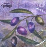 Olivenzweig & Oliven - Olive branch & olives - Branche d olives et olives