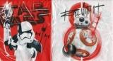 R2D2 & Trooper