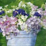 Hortensien im Eimer - Hydrangeas in a bucket - Hortensias dans un seau