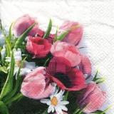 Strauss aus Mohn, Pfingstrosen, Tulpen & Margeriten - Bouquet of poppies, peonies, tulips & daisies - Bouquet de coquelicots, de pivoines, de tulipes et de marguerites