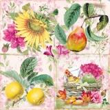 Äpfel, Birne, Sonnenblume, Pfingstrose & ein gefüllter Korb - Apples, pear, sunflower, peony & a filled basket - Pommes, poires, tournesols, pivoines et un panier rempli