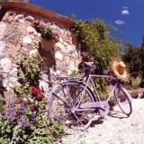 lila Fahrrad mit Strohhutsteht in einer wunderschönen Landschaftpurple bicycle with straw hat standing in a beautiful landscape - vélo violet avec chapeau de paille debout dans un beau paysage