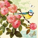 Blaumeise & Schmetterlinge besuchen einen Rosenzweig, Rosen -  Blue tit & butterflies visit a rose branch, roses - Mésange bleue et papillons visitent une branche de rose, roses