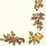Eichel & Haselnusszweige - Acorn & hazelnut branches - Branches de gland et de noisetier
