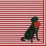 Caspari - 2 Labradore, Hund mit einen roten Herz in der Schnauze - 2 Labradors, dog with a red heart in its muzzle - 2 Labradors, chien avec un coeur rouge dans son museau