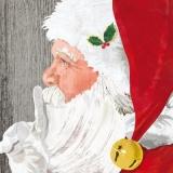 Leise, der Weihnachtsmann ist da - Quiet, Santa Claus is here - Calme, le Père Noël est ici