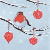 Rotkehlchen sitzt auf einen Ast mit Baumschmuck - Robin sits on a branch with tree decorations - Robin est assis sur une branche avec des décorations d arbres