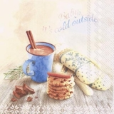 heisse Schokolade, Cookies, Schokolade & warme Handschuhe - hot chocolate, cookies, chocolate & warm gloves - chocolat chaud, biscuits, chocolat et gants chauds