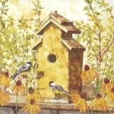 2 Vögel besuchen ein Vogelhäuschen - 2 birds visit a birdhouse - 2 oiseaux visitent un nichoir