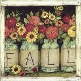 verschieden Blumen, Sonnenblume im Glas - different flowers, sunflower in the glass - différentes fleurs, tournesol dans le verre