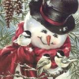 3 Vögel besuchen den Schneemann - 3 birds visit the snowman - 3 oiseaux visitent le bonhomme de neige