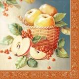 Korb voller Äpfel - Basket full of apples - Panier plein de pommes