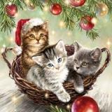 3 kleine Kätzchen im Korb unter dem Weihnachtsbaum - 3 little kittens in the basket under the Christmas tree - 3 petits chatons dans le panier sous le sapin