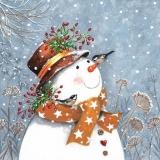 2 Vögel besuchen einen Schneemann - 2 birds visit a snowman - 2 oiseaux visitent un bonhomme de neige