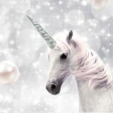 wunderschönes Einhorn - beautiful unicorn - belle licorne