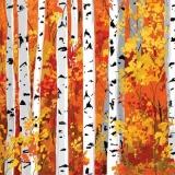 herbstlicher Hain - autumnal grove - bosquet automnal