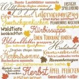 Herbstaktivitäten - Fall activities - activités automnales