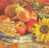 Äpfel, Birnen, Korn & 1 Sonnenblume in einer Schal auf einem Holztisch - Apples, pears, grain & 1 sunflower in a scarf on a wooden table - Pommes, poires, grains & 1 tournesol dans une écharpe sur une