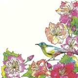 exotischer Vogel im farbenprächtigen Blütenrahmen - exotic bird in a colorful flower frame - oiseau exotique dans un cadre de fleurs colorées