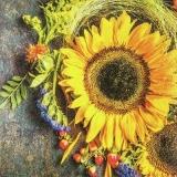 Sonnenblume mit einen herbstlichen Arrangement - Sunflower with an autumnal arrangement - Tournesol avec un arrangement automnal