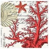 Michel Design - Rote Korallen, Muscheln, Seesterne & Seepferdchen - Red coral, shells, starfish & seahorses - Corail rouge, coquillages, étoiles de mer et hippocampes
