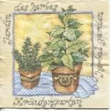 Kräutertöpfe - potted herbs - herbes en pot