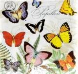 Michel Design - viele bunte Schmetterlinge & Geschriebenes - many colorful butterflies & written - beaucoup de papillons colorés et écrits