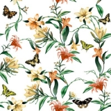 Schmetterlinge besuchen Blumen - Butterflies visit flowers - Les papillons visitent les fleurs