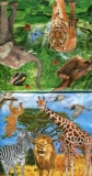 Tiere des Dschungels - Animals of the jungle - Animaux de la jungle