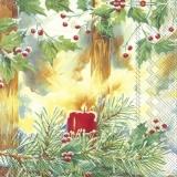 Kerze leuchtet im winterlichen Wald - Candle lights in the wintry forest - Bougies dans la forêt hivernale