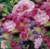 ein Meer an Rosen - a sea of roses - une mer de roses