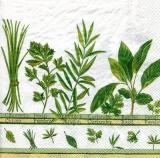Kräutergarten - Herb garden - jardin d herbes aromatiques