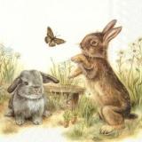 2 süsse Häschen spielen im Garten mit einen Schmetterling - 2 sweet bunnies are playing in the garden with a butterfly - 2 doux lapins jouent dans le jardin avec un papillon