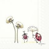 Marienkäfer & Pusteblumen - Ladybugs & Dandelions - Coccinelles et pissenlits