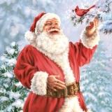 Weihnachtsmann besucht ein Vöglein - Santa Claus visits a bird - Père Noël rend visite à un oiseau