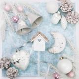 Vogelhaus, Baumschmuck & Zapfen - Birdhouse, tree decorations & cones - Birdhouse, décorations d arbres et cônes