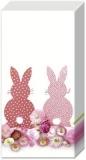2 Hasen - 2 rabbits - 2 lapins