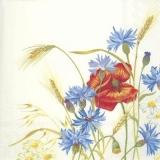 Kornblumen, Getreide & Mohn - Cornflowers, cereals & poppy - Bleuets, céréales et pavot