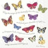 viele verschiedene bunte Schmetterlinge - many different colorful butterflies - nombreux papillons colorés
