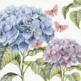 Hortensien & Schmetterlinge - Hydrangeas & Butterflies - Hortensias & Papillons