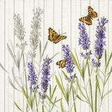 Lavendel & Schmetterlinge - Lavender & butterflies - Lavande et papillons