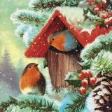 2 Rotkehlchen am winterlichen Vogelhäuschen - 2 robins at the winter birdhouse - 2 robins au nichoir d hiver