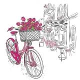 Tulpen am Fahrrad vor einem Cafe - Tulips on a bicycle in front of a cafe - Tulipes à bicyclette devant un café