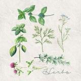 feine Kräuter - fine herbs - fines herbes