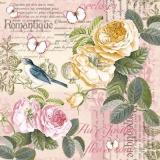 Schmetterlinge & 1 Vogel besuchen zarte wunderschöne Rosen - Butterflies & 1 bird visit delicate beautiful roses - Papillons & 1 oiseau visitent de belles roses délicates